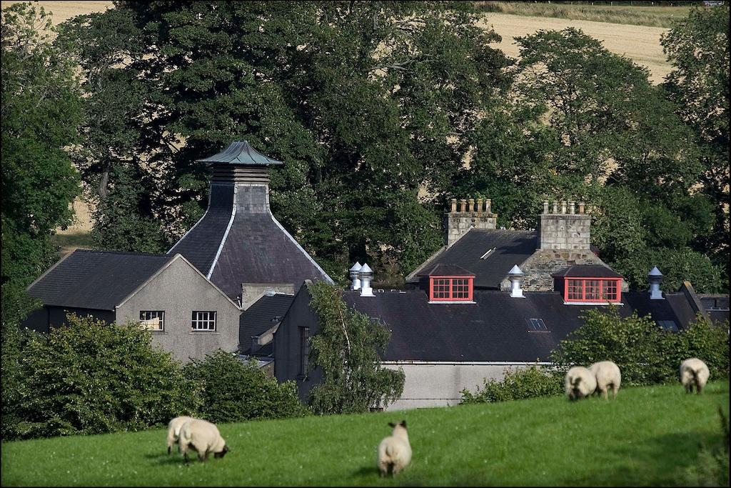 Glen Dronach im Sommer