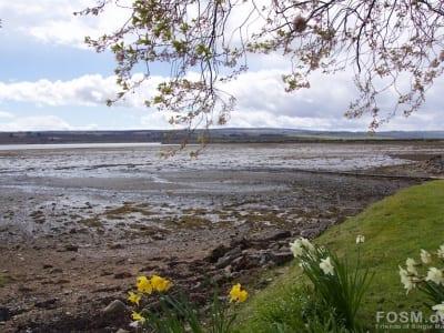Blick Cromarty Firth - südlich