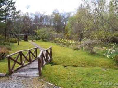 Weg zur Tarlogie Spring