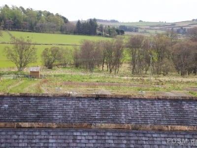 Blick vom Still house Dach