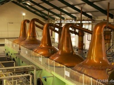 Ardmore Distillery Still House