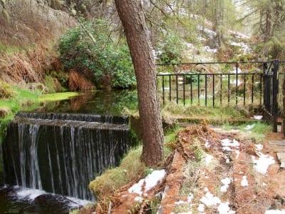Wasserquelle Tormore