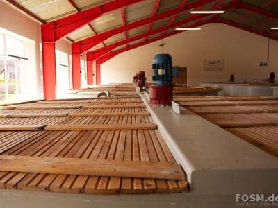 Glenfarclas Mash House - Wash Backs