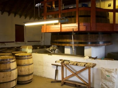 Benromach - Filling Store