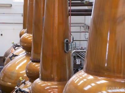 Mortlach Distillery - Stills aus der Nähe