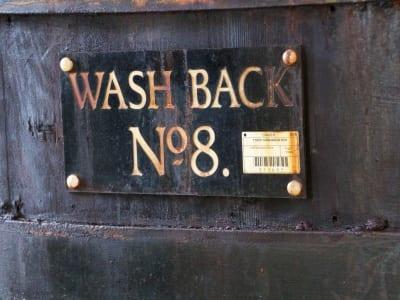 Benrinnes - Washback #8