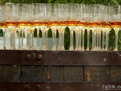 Apleton Rum