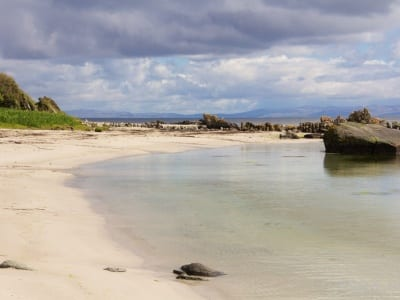 Ardnatalla Beach 4