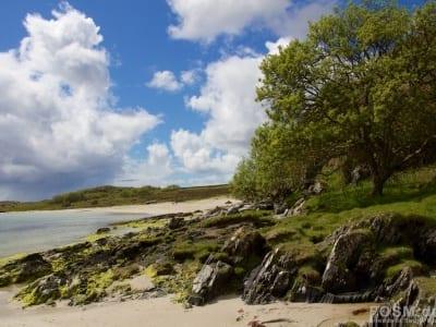 Ardnatalla Beach 8
